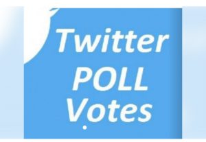Give you 500 Twitter Poll Votes  contest