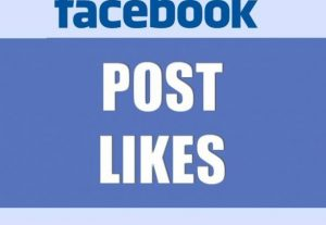 Manually give you 200 USA Facebook Fan page's Post status videos Likes