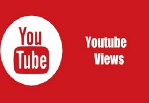 i will give you 1,000 youtube views