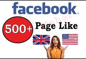 Get 500+ Facebook HQ USA And UK Fan Page Like or 400+ Instagram Guaranteed follower For 5$