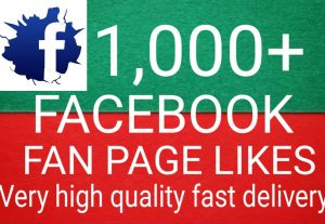 I will Promote 1,000+ Facebook Fan Page Likes high quality and fast delivery