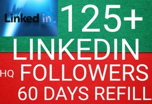 I WILL GIVE YOU 125+ LINKEDIN FOLLOWERS NON DROP AND ORGANIC HIGH QUALITY PROMOTION WITH INSTANT START