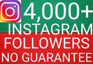 I will give you add 4,000+ Instagram followers high quality promotion Real organic with non drop fast delivery