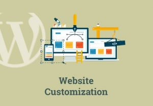 I can install , customize , redesign WordPress website