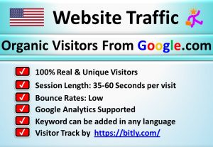 5000+ Valuable Traffic (Visitors) From Google.com of USA Country for Your Blogs or Websites