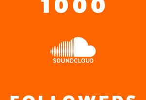 I Send you 1000+ soundcloud followers None DROP