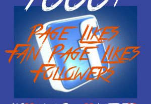 1000+ Page/Fan page Likes or Followers at Instant with High quality Promotions,Real and 100% Organic.