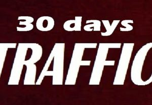 deliver 30 days Human real TRAFFIC to your Link/Shop/blog/website For 23$