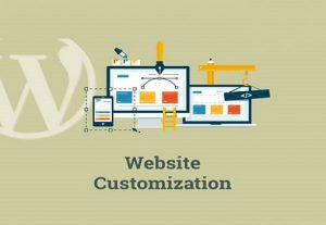 i can Develop WordPress website, Customize WordPress theme