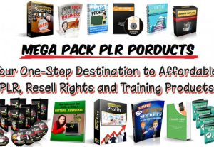 Over 8GB PLR Articles Ebooks & Video