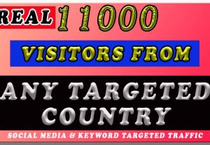 11000 ANY TARGETED COUNTRY TRAFFIC FOR 7 DAYS