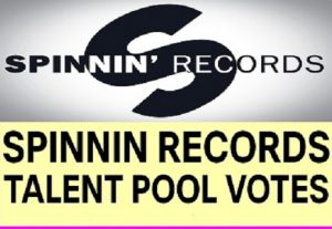 150+ Spinnin Records Talent Pool Votes