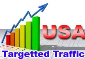 Send 5500+ USA Web Traffics with Social Media Referral