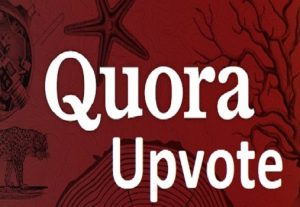 100+ Worldwide Quora Upvote or Follow