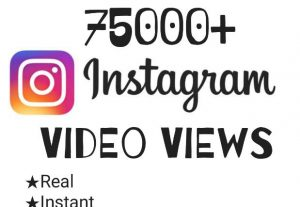 Enrich your Instagram post with 75,000+ Views at instant!!