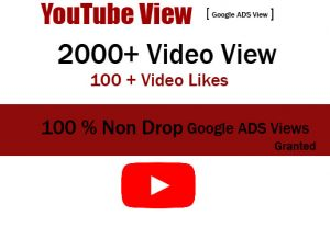 Get 2000+ Non Drop Google ADS Views And 100+ Video LIkes