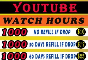 Organic 1000 Hours  YouTube  Watch Time Video Views