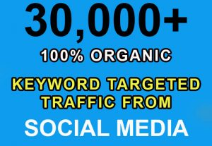 30,000+ keyword targeted traffic from Google, Twitter, YouTube etc for $4