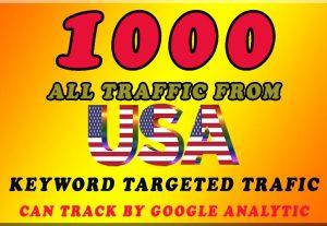 I will send 1000 USA keyword Target Traffic.