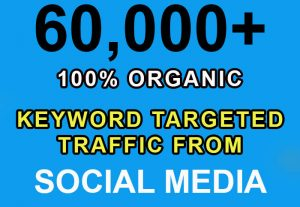 60,000+ keyword targeted traffic from Google, Twitter, YouTube etc for $5