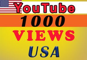 USA  Targeted YouTube video views for $8