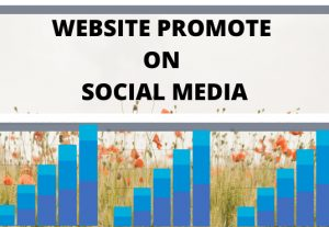 I will rank your website promote on social media
