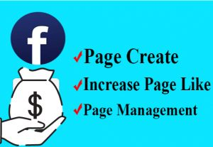 I will manage your facebook page to grow page followers