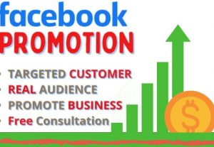 I will facebook advertising, ads, marketing for social media