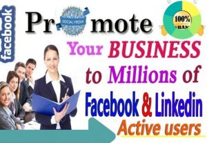 I will do facebook promotion and linkedin marketing for any business