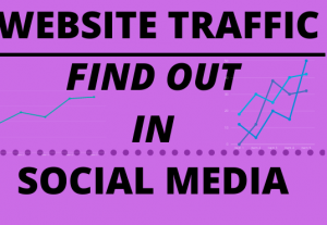 I will marketing for find out website traffic