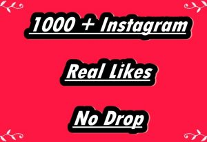 I Will Provide 1000+ Instagram Non-Drop Real Likes