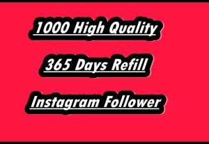 I Will Provide You 1000 High-Quality Guaranteed Instagram Followers