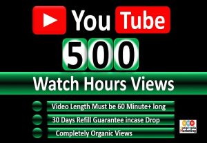 Get Organic 500 Hours Watch Time YouTube Video Views