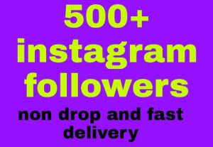 500 Instagram followers all are non drop