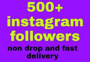 500 Instagram followers all are non drop