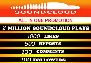 2Million SOUDCLOUD PLAYS and all in one for $8