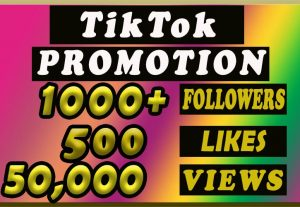 1000+ TikTok Followers, 50k Video Views , 500+ Likes for $20