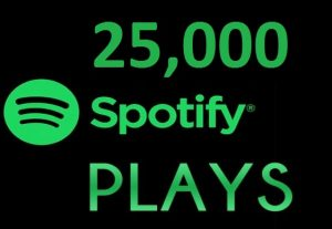 25,000 HQ Spotify Streams Plays Music Promotion