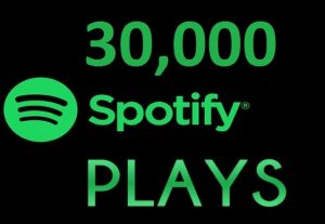 30,000 HQ Spotify Streams Plays Music Promotion
