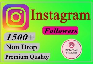 I will Give You 1500+ Instagram Followers Lifetime Non Drop.