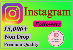 I will Give You 15,000+ Instagram Followers Lifetime Non Drop.