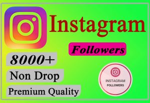 I will Give You 8000+ Instagram Followers Lifetime Non Drop.