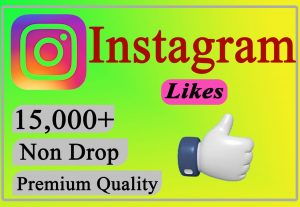 I will Give You 15,000+ Instagram Likes Lifetime Non Drop.