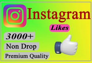 I will Give You 3000+ Instagram Likes Lifetime Non Drop.