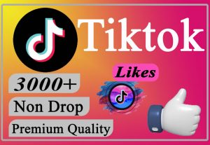 I will Give You 3000+ TikTok Likes LIFETIME Non-Dr