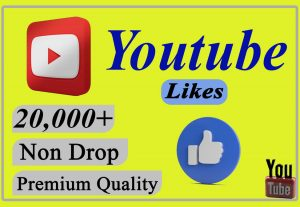 I will provide you 20,000+ YouTube Video likes Non-drop and Lifetime.