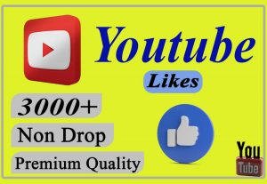 I will provide you 3000+ YouTube Video likes Non-drop and Lifetime.