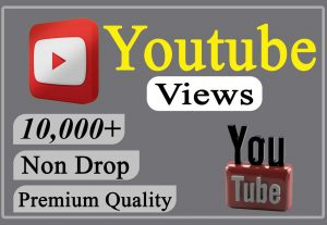 I will provide you 10,000+ YouTube Video Views Non-drop and Lifetime.