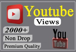 I will provide you 2000+ YouTube Video Views Non-drop and Lifetime.