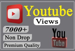 I will provide you 7000+ YouTube Video Views Non-drop and Lifetime.